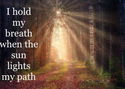 The Sun Lights My Path